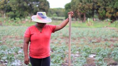 La agroferia ExpoRiohacha será del 26 al 28 de noviembre