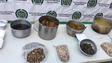 Decomisan 24 kilos de tortuga y capturan a dos personas en Riohacha