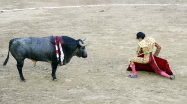 Avanza ley que prohíbe la tauromaquia