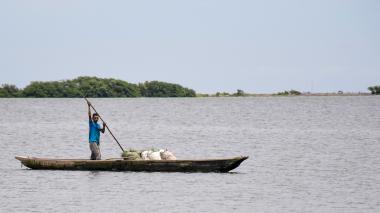 Comunidad internacional respalda el plan de Barranquilla como biodiverciudad