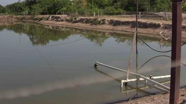 Triple A denuncia que conexiones ilegales afectan distribución en municipios