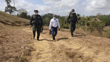 Investigan muerte de dos monos aulladores en Lorica