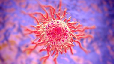 El cáncer, la otra pandemia que combate la humanidad