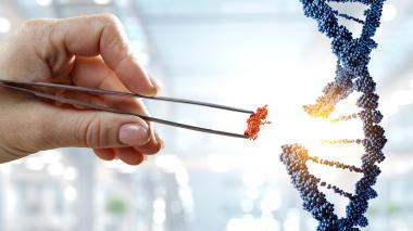 Mujeres y ciencia, desigualdad preocupante