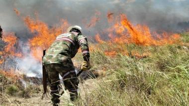 Incendio arrasa unas 3.000 hectáreas del Parque Nacional El Tuparro