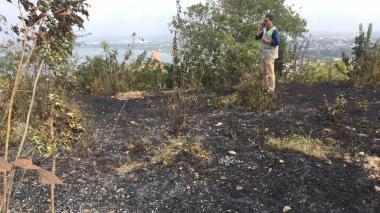 Denuncian la quema de árboles en La Popa, Cartagena