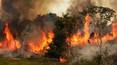 Alerta por incendios forestales en Cesar