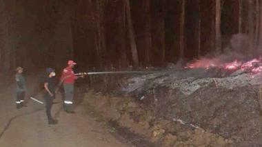 Incendio acaba con 16 hectáreas de terreno que había sido restituido en Sucre
