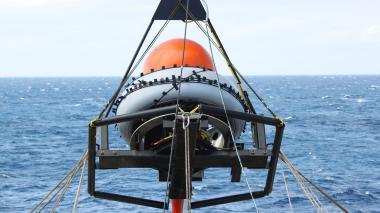 Científicos captan sonidos de los mar durante la pandemia