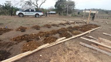 Policía de Córdoba interviene corraleja en zona rural de Puerto Escondido