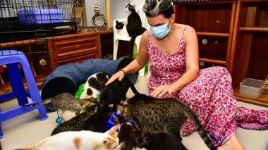 Rescatar animales salvó a Claudia Lamas