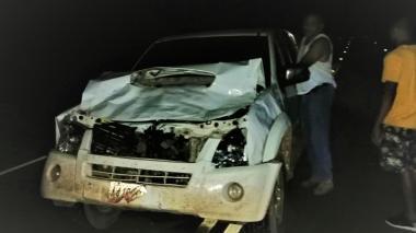 Concejal de Albania sufre accidente tras colisionar contra un toro