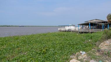 Tarulla en el río Magdalena no afecta la navegabilidad