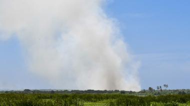 Alertan sobre quemas repetitivas en Isla 1972