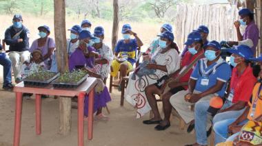 Los wayuu aprenden a mitigar efectos del pastoreo