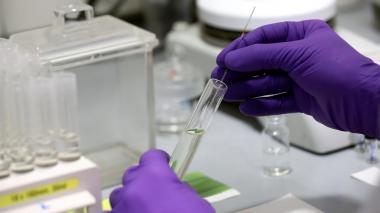 Autorizado el primer ensayo clínico de una vacuna española contra la covid-19