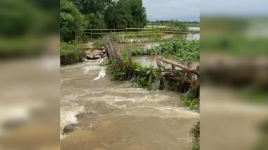 Caimito y San Marcos están inundados por desbordamiento del río San Jorge