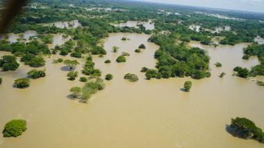Inundaciones, ganado muerto y  familias sin techo: el drama en La Mojana