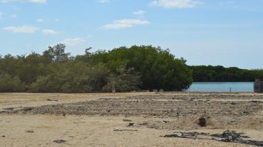 Encuentran cuatro cadáveres en la Alta Guajira