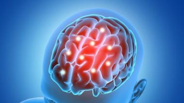 Computador cerebral