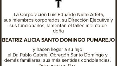 Beatriz Alicia Santo Domingo Pumarejo