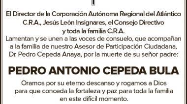 Pedro Antonio Cepeda Bula