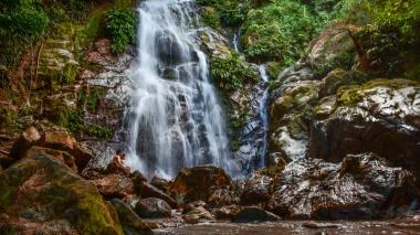 En el Día del Medio Ambiente, contemple la belleza natural de Colombia