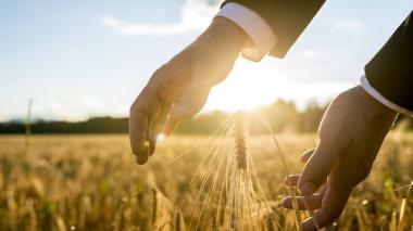 Paz y prosperidad: la clave