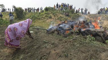 En video | Dos elefantes mueren atropellados por un tren en India