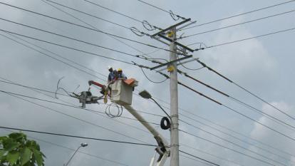 Hurtan 100 metros de redes eléctricas en zona rural de Usiacurí
