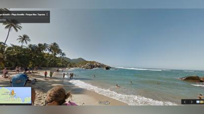 Google captura la biodiversidad colombiana en 360 grados
