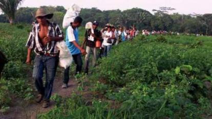 Grupo de campesinos retornando a sus tierras.