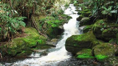 Colombia cuenta con 17 planes de ordenación y manejo de cuencas hidrográficas