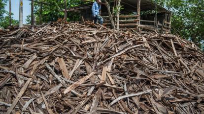 Benjamín Goenaga camina sobre maderas con un tronco sobre sus hombros.