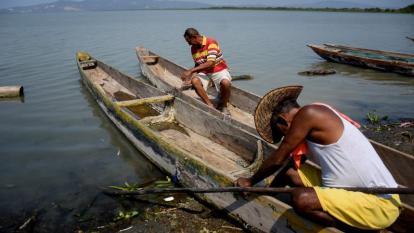 En 10 años, cambio climático reduciría la pesca del Caribe en un 50%: estudio