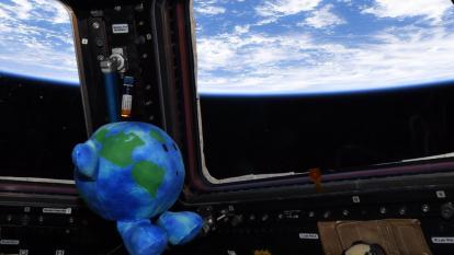 Conozca la historia del primer muñeco del felpa que llega al espacio