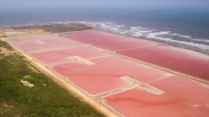 Galerazamba renace como primer  plan de 'economía naranja'