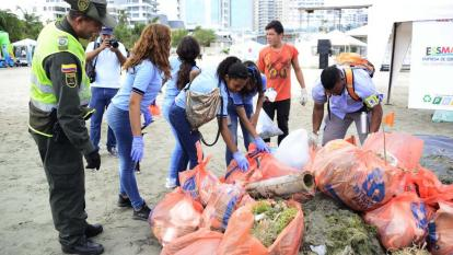 Fueron liberados cangrejos y camarones atrapados en desechos plásticos