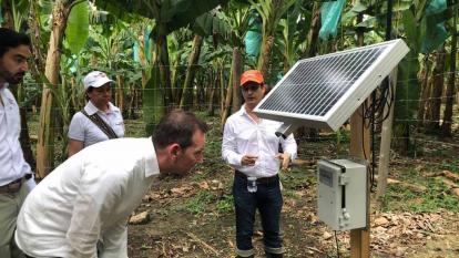 Embajador de Reino Unido exalta industria del banano en Magdalena