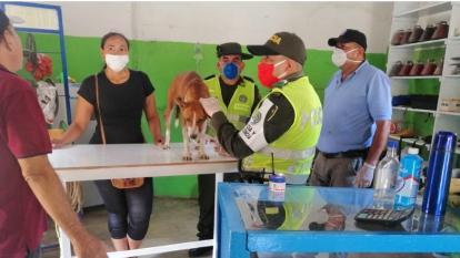 Uniformados de la Policía de Bolívar y animalistas atendieron al perro callejero malherido.