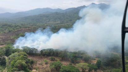 Incendio consume 800 hectáreas de la Sierra Nevada en La Guajira