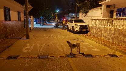 Policía rescata a Fiona, una perrita abusada en Baranoa
