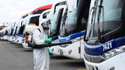 Un funcionario de una empresa de transporte realiza la desinfección de la flota de buses.