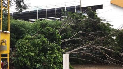 Air-e activó plan de contingencia ante tormenta tropical en el Caribe