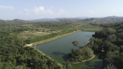 Con el vivero Río Dulce, crecen los sueños de biodiverciudad en Barranquilla