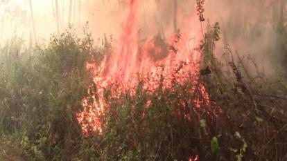 Córdoba, entre los departamentos con alertas de incendio por calor
