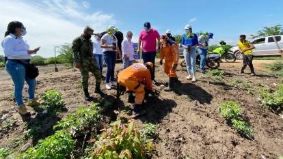Inicia reforestación de cuencas con 2.500 árboles del vivero del Cesar