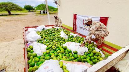 Ejército y Policía Fiscal decomisan 3 toneladas de aguacate de contrabando en La Guajira