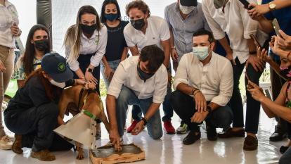 Distrito puso la 'primera huella' del Centro de Bienestar Animal