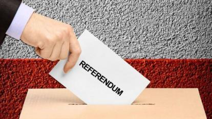 Referendo Constitucional